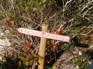 Anello Antico Sentiero Contrabbandieri Parco Monte Menola_6