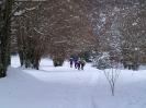 Ciaspolata sulla neve _15