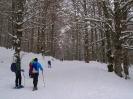 Ciaspolata sulla neve _4