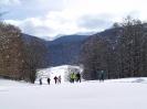 Ciaspolata sulla neve _5