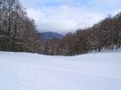 Ciaspolata sulla neve _7
