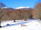 Ciaspolata sulla neve - Forca d-Acero_2