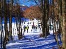 Ciaspolata sulla neve - Forca d-Acero_4