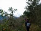 Da San Tommaso a San Benedetto - 17-03-2013_6