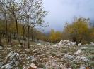 Escursione a Monte Revole_3