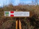 Escursione Monte Appiolo_6