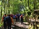 Escursione sul Vesuvio_8