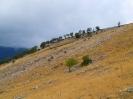 Trekking Monte Marsicano da Opi_8