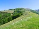 Escursione trekking a Mte Bellaveduta_3