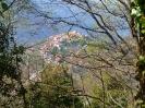 Monte Faggeto_6