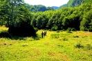 Escursione del 20-07-2014_6