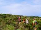 Week End isola di Ponza_25